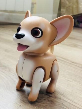 Собака интерактивная «Джим». Обухов. фото 1