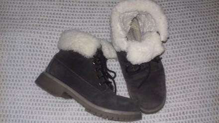 Женские ботинки зима  T.Taccardi 38 размер. Киев. фото 1
