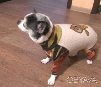 ᐈ комбинезон для собак из тонкого флиса ᐈ харьков 120 грн Obyava