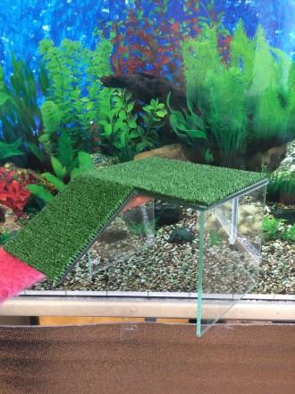 Мостики в аквариум  для черепах. Киев. фото 1