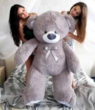 Плюшевый мишка | Большие медведи Тедди, Медведь большой, Огромный мишка. Киев. фото 1