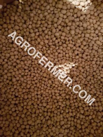 Семена сои ABEE Канадский трансгенный сорт (элита). Одеса. фото 1