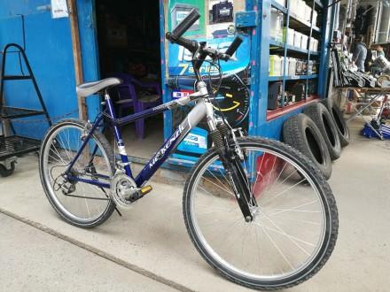 Горный велосипед Mc Kenzie 19