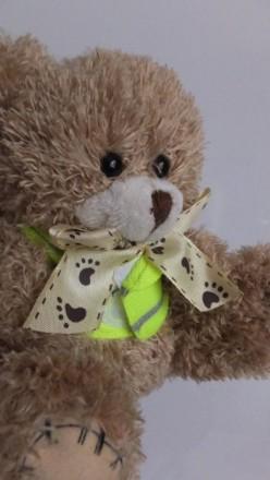 обаятельный Rascal Bears teddy bear мишка медвежонок медведь плюшевый. Сокиряны. фото 1