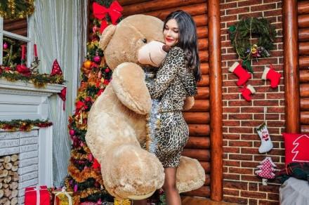Плюшевый мишка teddy bear плюшевий ведмедик. Ивано-Франковск. фото 1