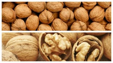 Грецкие орехи 28 кг. Киев. фото 1