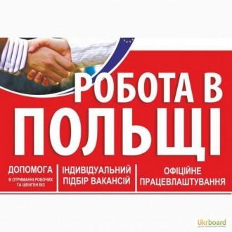 Забезпечуємо працею в Польщі. Киев. фото 1