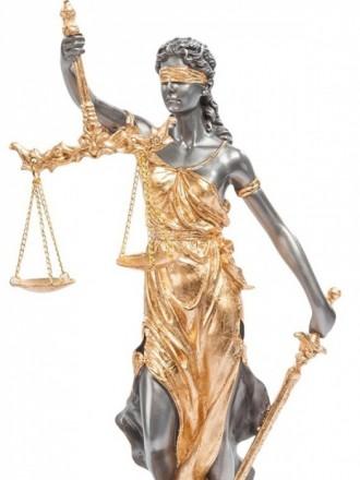 Юридические услуги. Юрист. Адвокат.. Кривой Рог. фото 1