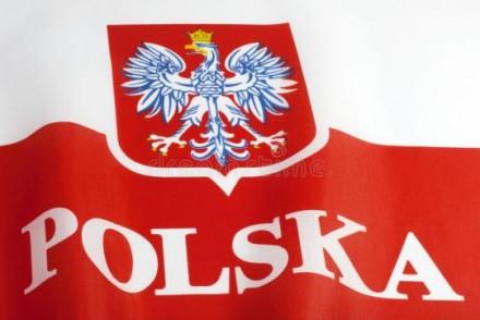 Сниму с учета польские авто. Бровары. фото 1