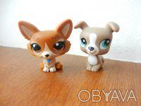"""ИГРУШКИ """"Littlest Pet Shop"""" от Hasbro  Производитель: HASBRO оригинал Цена за . Одеса, Одеська область. фото 3"""