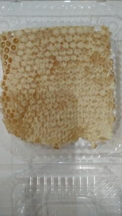 Мёд сотовый, натуральный, собранный на своей пасеке в Черкасской области. Это н. Киев, Киевская область. фото 3