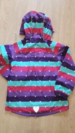 Демисезонная курточка Topolino, 110, 116р., подкладка флис. Цвет более яркий и . Чернигов, Черниговская область. фото 3
