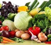Насіння овочів Clause Seminis. Прилуки. фото 1