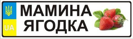 Вы долго думали, что подарить ребенку?! И вот мы предлагаем уникальную возможнос. Киев, Киевская область. фото 11