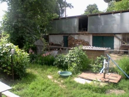 Продам дом с участком, в селе Красное, 25 км от Чернигова по трассе Киев-Черниго. Чернигов, Черниговская область. фото 3