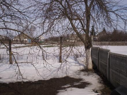 Дачна ділянка кооператив Кринички. Белая Церковь. фото 1