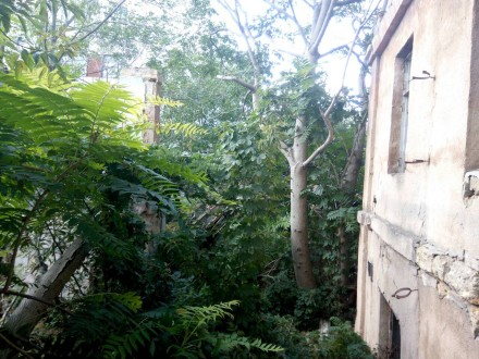 Продажа здания под реконструкцию – Вознесенский переулок. Одесса. фото 1