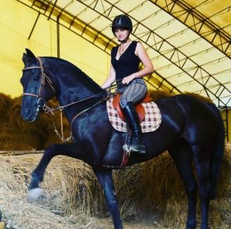 Вы научитесь управлять лошадью, правильно держаться в седле, ездить разными аллю. Харьков, Харьковская область. фото 5