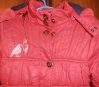 Демисезонная курточка на девочку (пр-во Польша) в очень хорошем состоянии. На би. Кривий Ріг, Дніпропетровська область. фото 5