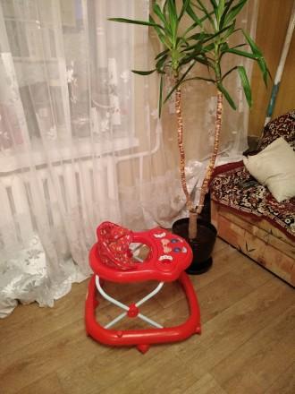 ходунки. Киев. фото 1