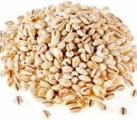 Продам, крупа, мука, фуражне зерно, крупи, олія, макуха та інше. Чернигов. фото 1