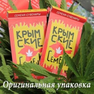Семена конопли(феминизированные, автоцветущие, фотопериод). Сувенир. Киев. фото 1