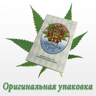 В интернет магазине Ukrop Seeds вы можете купить семена конопли элитных сортов д. Киев, Киевская область. фото 3