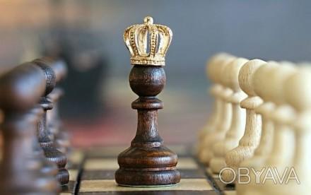 Уроки игры в шахматы для детей и взрослых в Imagine!  Молодые люди и дети, отк. Днепр, Днепропетровская область. фото 1