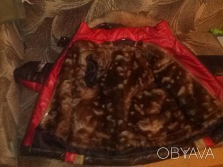 Выгодное предложение.Расцветка не выходящая из моды. В связи с выездом. Куртка.. Кривой Рог, Днепропетровская область. фото 1