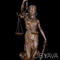 Профессионал - адвокат предоставляет свои услуги.. Київ. фото 1