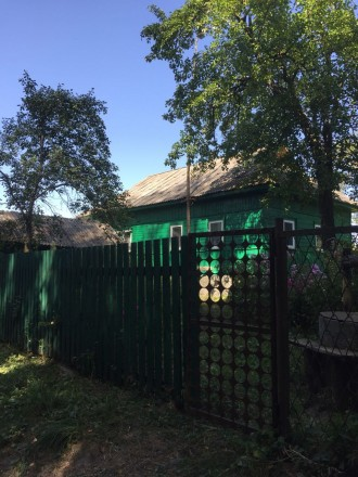 Дом в с. Макишин на реке Сновск. Городня. фото 1