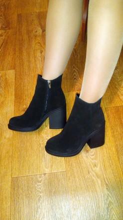Женские ботинки натуральный замш. Мариуполь. фото 1