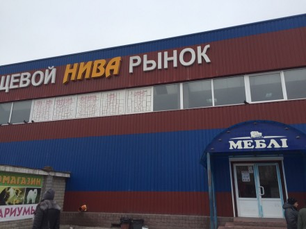 + Аренда 1300м р-н Нивы. Чернигов. фото 1
