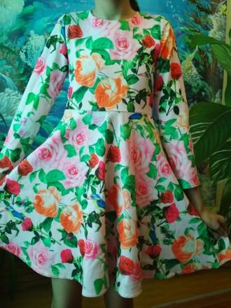 Красиві плаття для дівчат. Бурштын. фото 1