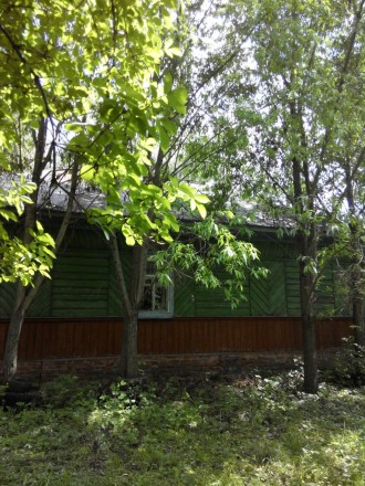 Будинок дерев'яний  с. Синявка. Чернигов. фото 1
