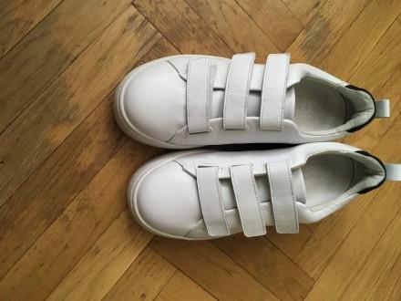 Шкіряні кросівки. Тернополь. фото 1