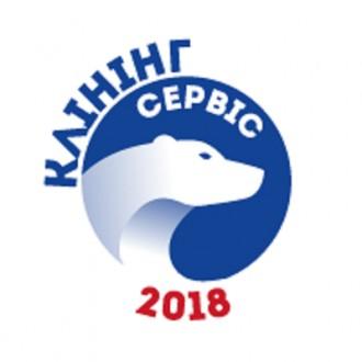 Делаем  классную уборку. Киев. фото 1