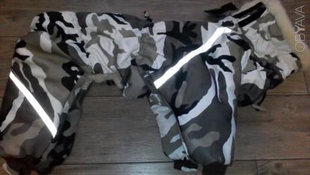 Комбинезон для собачки индивидуальный пошив.. Киев. фото 1