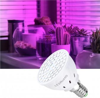 Светодиодная лампа для выращивания растений 3W GU10 фитолампа. Полтава. фото 1