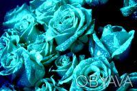 Светящаяся краска для живых роз. Винница. фото 1