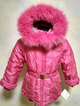 Куртка для девочки ТМ Diwa Club-размеры 104, 110 и 116- распродажа. Белая Церковь. фото 1