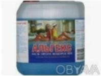 Альгекс (Альгицид)  5л  - средство от цветения воды в бассейне. Киев. фото 1