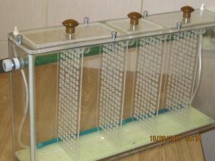 Продам -5 ти секционный,переносной аквариум из органического стекла, наружные ра. Одесса, Одесская область. фото 7