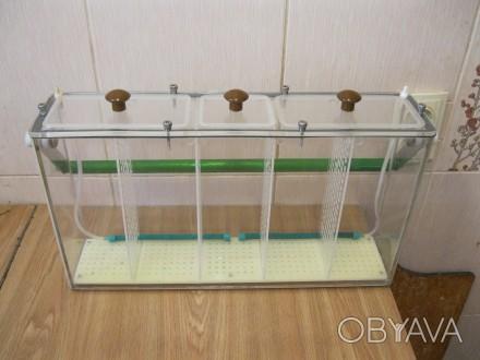 Продам -5 ти секционный,переносной аквариум из органического стекла, наружные ра. Одесса, Одесская область. фото 1