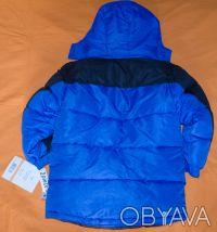 Классная брендовая  куртка Rothschild , куплена в США, .зимняя,очень теплая.  Ка. Киев, Киевская область. фото 5