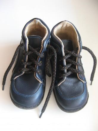 Детские ортопедические ботинки Т-002 (15,5 см), Ортекс (Украина). Полтава. фото 1
