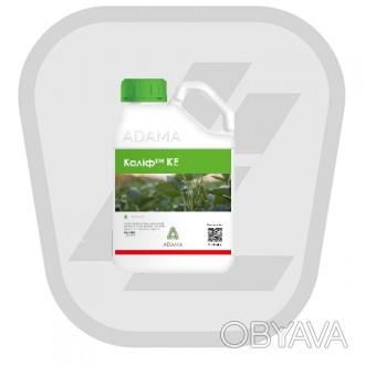 Купить гербицид Калиф – доступная цена   Сложность в подборе оптимально подход. Кропивницкий, Кировоградская область. фото 1