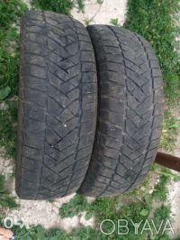 Dunlop 195/60 R16C. Ладыжин. фото 1