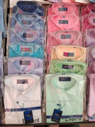 Рубашка від 170грн,сорочка шкiльна,бабочка,жилетка,брюки, пиджаки,сарафаны,школ. Киев, Киевская область. фото 8