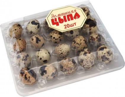 Перепелиные яйца. с.Демидов Киевская область. Иванков. фото 1
